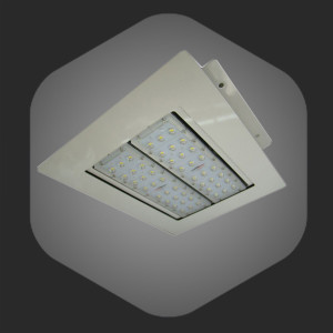 Popular LED Canopy Light