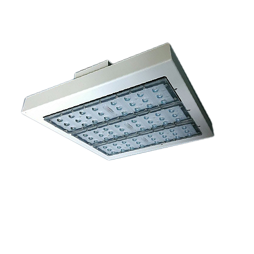 lighting body for the led canopy lamp